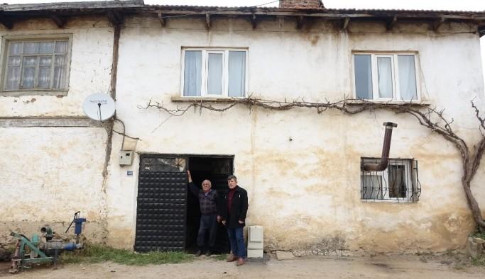 Köyün gençleri evden çıkamayan yaşlıların ağaçlarını buduyor