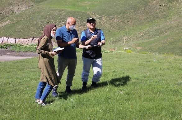 Erzurum Palandöken Kayak Merkezi ağaçlandırılıyor