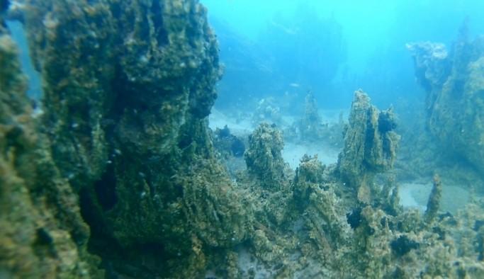 800 bin yıllık geçmişe sahip Van Gölü'nün derinliklerindeki kalıntılar gün yüzüne çıkartılıyor