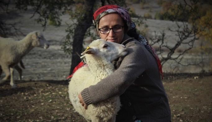 Dağlarda kadın başına 150 koyununa çobanlık yapıyor