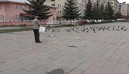 Evine aldığı ekmeği güvercinlere verdi