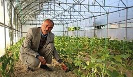 Uzundere'de organik sebze ve meyve üretimi