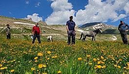 CİSAD üyeleri dağ ve göllere tırmandı