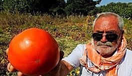 Dededen toruna tohum yaşatma çabası