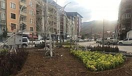 Hakkari Belediyesinden kenti çiçeklerle süsleme çalışması