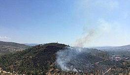 Milas'taki yangın, hızlı müdahale ile kontrol altına alındı