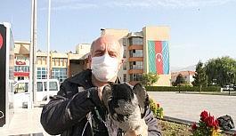 Yaralı karganın imdadına belediye çalışanı yetişti